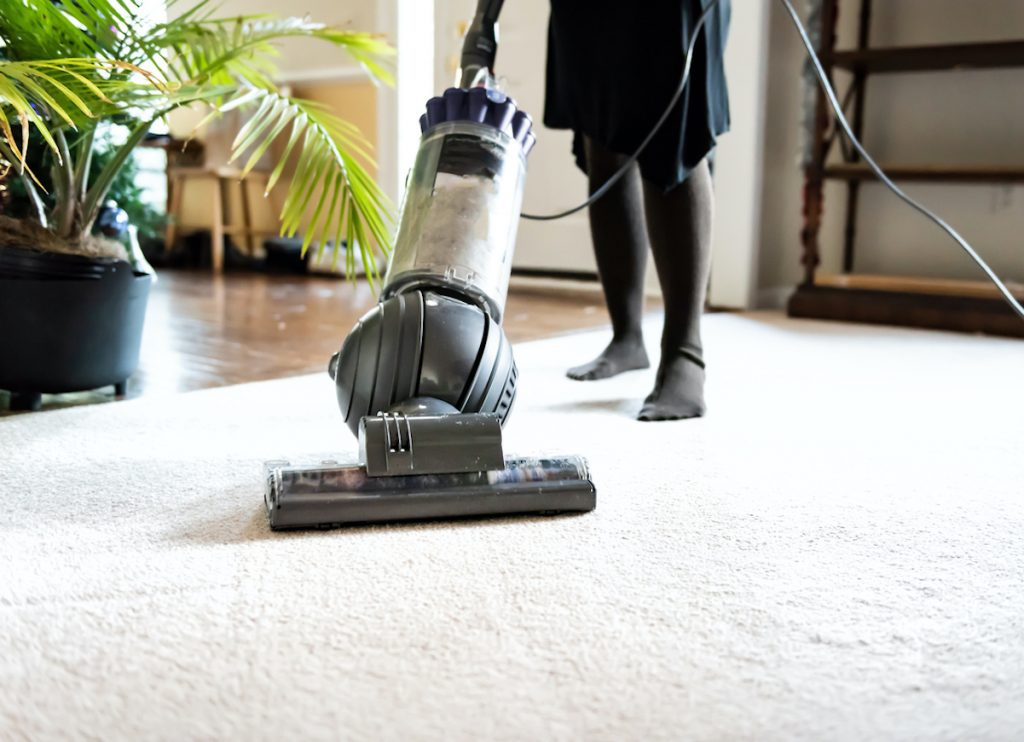 Closeup of woman, female doing cleaning at home with vacuum cleaner showing head, brush on carpet floor, green plants, shelves, furniture