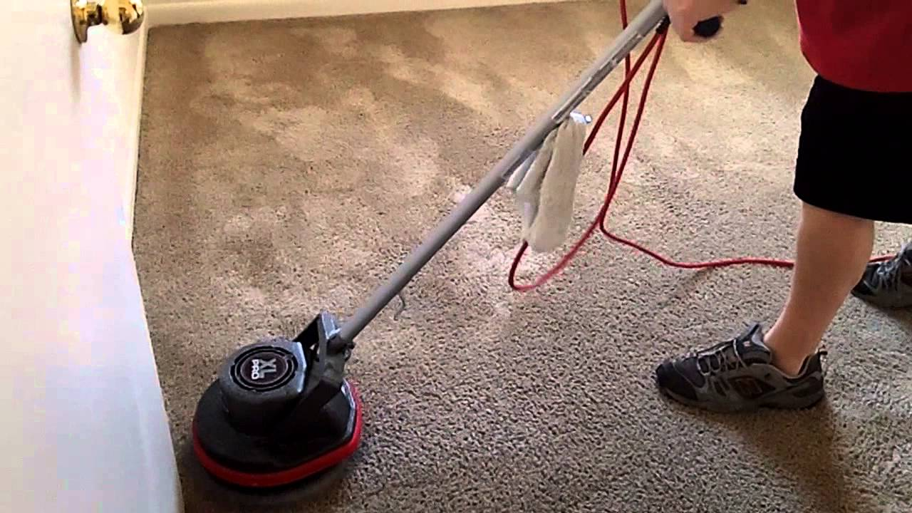 Avoid vacuuming wet carpets